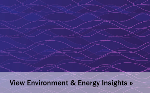 View Environment & Energy Insights blog