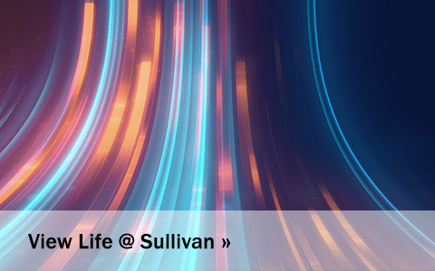 View Life @ Sullivan blog